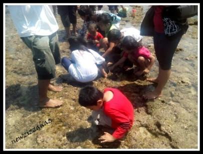 mencari kerang dan ikan-ikan kecil di lobang karang... saya dapat cumi--cumi, tapi saya lepaskan lagi